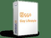 Gay Lifestyle